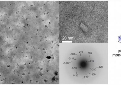 THERMOREVERSIBLE PARTICLES FOR THE CONTROLLED RELEASE OF MEDICATION